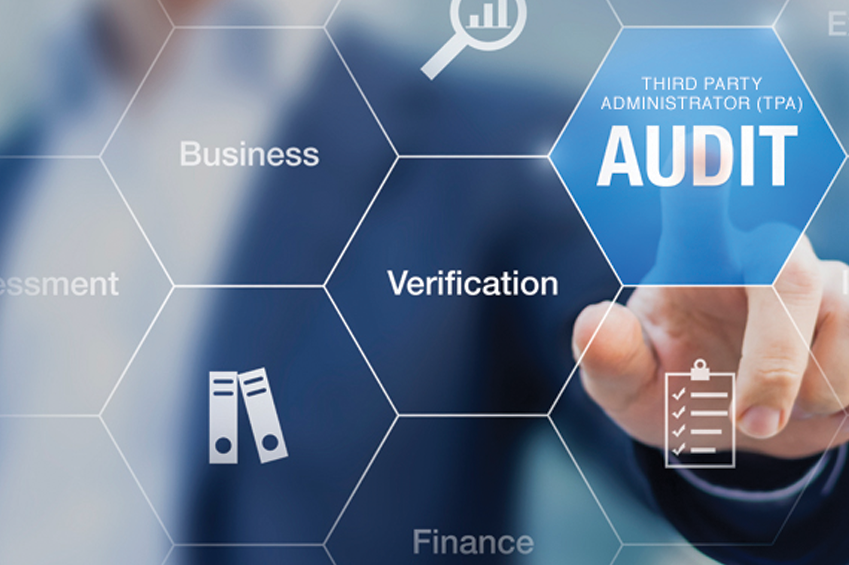 Professional Auditing Services In Dubai Hallerbos Accounting